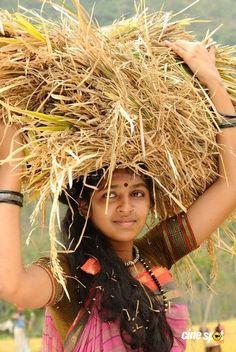 Lakshmi Menon (actress) Photos - Lakshmi Menon in Kumki Girl Photo Poses, Girl Photography Poses, Girl Photos, Beautiful Girl Image, Beautiful Children, Tamanna Hot Images, Kashta Saree, Wedding Album Cover, Lakshmi Menon