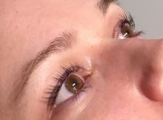 Tea Party Beauty: LVL Lashes Review