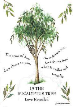 Tree Magick - Gillian Kemp