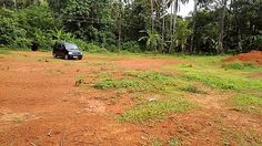 31 cent Residential  Plot Near  Venginissery,Thrissur,