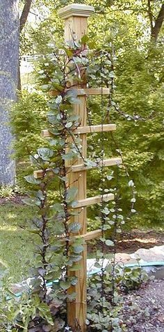 A great trellis idea for climbing vines! this would look great with a bird house on top of post! #gardenvinesdiy #gardenvinestrellis #buildabirdhouse