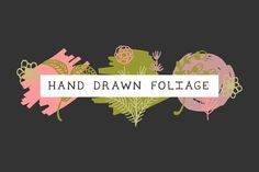 Hand drawn foliage vol. 2 by Britteds on @creativemarket