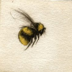 Bumble bee :) I like this water color style. is it possible to make tattoos look like water color? If you find a talented enough artist and aren't afraid to pay a good amount of money! Bumble Bee Tattoo, Honey Bee Tattoo, I Tattoo, Cool Tattoos, Tatoos, Wasp Tattoo, Tattoo Music, Bee Painting, Bee Art