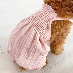 小型犬のお洋服 PreciousFamily(プレシャスファミリー)犬服/ドッグウェア Winter Hats, Blanket, Fashion, Blankets, Moda, La Mode, Fasion, Carpet, Fashion Models