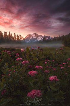 Elemental, Mt Shuksan, Washington, United States. -by Ryan Dyar.