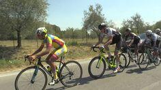 56 Coppa Pietro Linari (18/08/2017) #toscana #toscanasprint #ciclismo #ciclismointoscana
