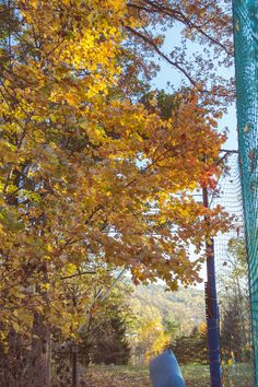 While we love the snow, Roundtop also becomes extremely colorful & beautiful in the fall!