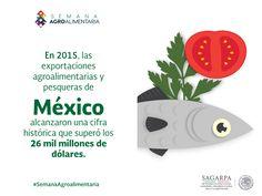 En 2015, las exportaciones agroalimentarias y pesqueras de México alcanzaron una cifra histórica que superó los 26 mil millones de dólares. SAGARPA SAGARPAMX #SemanaAgroalimentaria