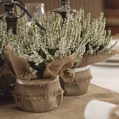 Burlap wedding plant wrap floral centrepiece by BaloolahBunting Wedding Table Centerpieces, Floral Centerpieces, Flower Arrangements, Wedding Decorations, Centrepieces, Buy Plants, Small Plants, Floral Wedding, Diy Wedding