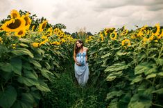 Sunflower Field Maternity | Nashville, Tennessee Photographer Maternity Photography Poses, Maternity Poses, Maternity Photographer, Fall Maternity Photos, Maternity Pictures, Pregnancy Photos, Pregnancy Fashion, Sunflower Field Photography, Sunflower Field Pictures