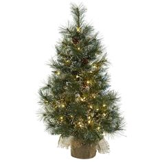 This three foot pine tree features 160 faux pine tips and 100 clear lights for a festive touch. Decorate your home with this beautiful tree including frosted tips, pine cones and a handsome burlap planter.