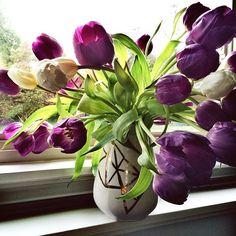 #tulips #ceramic #ceramics #pottery #gceramicandco #gabriellephant #handmade #vancouver #whiterock #artisan #maker
