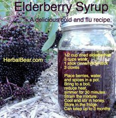 Elderberry Syrup A Delicious Cold and Flu Recipe Natural Health Remedies, Natural Cures, Natural Healing, Elderberry Benefits, Elderberry Recipes, Elderberry Plant, Elderberry Juice, Flu Remedies, Herbal Remedies