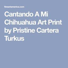 Cantando A Mi Chihuahua Art Print by Pristine Cartera Turkus