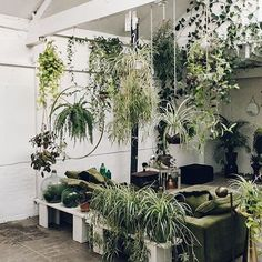 After the beautiful show with @studiohienle two days ago we would love to be in this little jungle to relax. #neubaueywear #exploreneubau