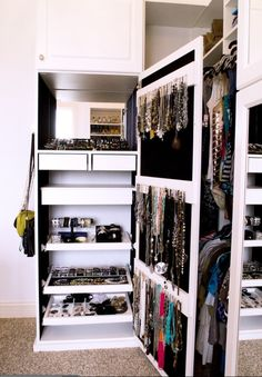 I would love this for my closet  Accessory organizer closet