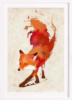 Vulpes vulpes als Premium Poster gerahmt