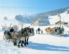 Pferdekutsche in Oberwiesenthal