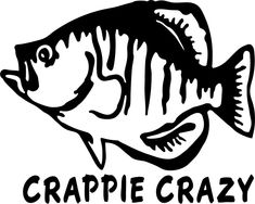Crappie Crazy Vinyl Decal Sticker Label – Decals N Crappie Fishing, Carp Fishing, Fishing Boats, Fishing Signs, Fishing T Shirts, Fishing Stuff, Fishing Quotes, Silhouette Clip Art, How To Get Better