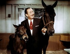Always had good animal shows that entertained!