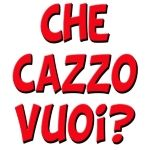 Learning Italian Language ~ What the f*** you want?