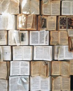 Pin by Talia Mathew on Books and Fandoms in 2020 Book background Book aesthetic Book photography