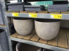 Nandina pot options - Big Bunnings