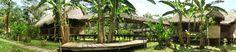 INOTAWA EXPEDITIONS- Jungle Stay in Puerto Maldonado, Peru  #expediawanderlust