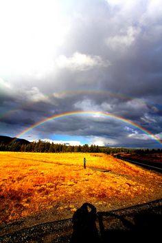 Rainbow in Yellowstone National Park, Wyoming