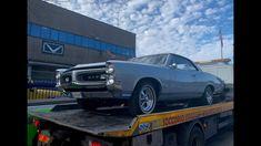 I ❤️ America: Tutti pazzi per la GTO! 1966 Pontiac GTO 389 V8 F.R. I Love America, Pontiac Gto, Father, Pai, Dads