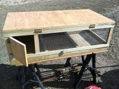 How to Build a DIY Quail Hutch - homeyou