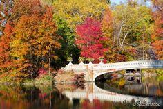 O Central Park, um dos principais parques de Nova York, adquire uma coloração incrível no outono