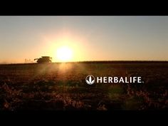 "From ""Seed to Feed"" 