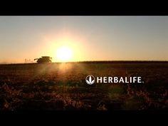 Del cultivo a la mesa | Herbalife - YouTube