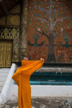 A. Abbas - Laos. 2008. Luang Prabang. Wat XIENG THONG, A monk adjusts his saffron robe in front of the elaborate murals of the temple.