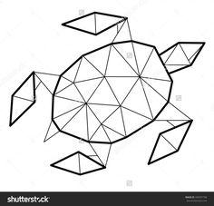 geometric turtle - Google Search