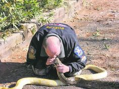 Saint George, Utah - reviving a snake from smoke inhalation i could not do this, but bless this guy for having the guts to do so.
