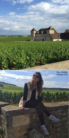 dijon, romanee conti, vinicola, vinho, frança, borgonha, natureza, gastronomia, viagens, parreira, uva, passeio, romance, paisagem