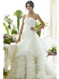 vanessas modern bride arlington heights