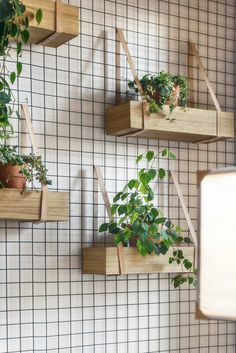 laniere-cuir-decoration-diy-jardin-vertical-diy-support-filet-metal-boites-bois