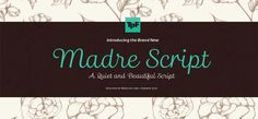 Madre Script by Marconi Lima – the discreet typeface