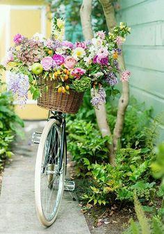 Colorful flowers + bike basket!