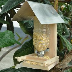 If your kids are wanting to try their hand at DIY, here's a project you can make with them and teach them a few tricks and how to use tools safely. Make A Bird Feeder, Bird Feeders, Projects For Kids, Crafts For Kids, Diy Crafts, Used Tools, Project Yourself, Home And Garden, Clip Art