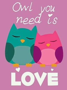 """LOVE is """"OWL"""" you need!"""