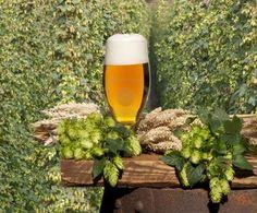 Ny forskning viser at øl er sunt. Beer, Tableware, Glass, Wine, Root Beer, Dinnerware, Drinkware, Dishes, Corning Glass