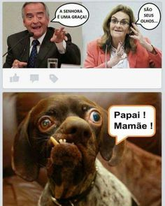 Funny Memes, Jokes, Frases Humor, Pranks, Laugh Out Loud, Google, Kpop, Anime, Words Of Love