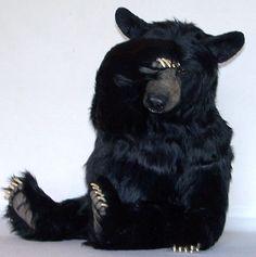 Black Bears - Citico Ridge Bears