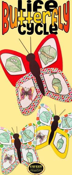 Simple craft for kindergarten and pre-K students to make a beautiful butterfly depicting the stages of the butterfly life cycle.