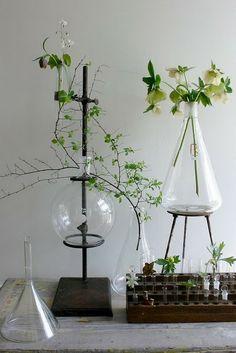 repurposed lab equipment for decorations
