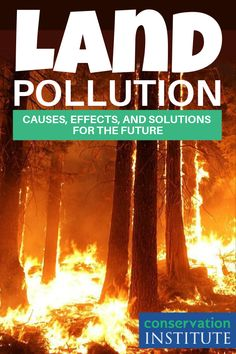 Land pollution is a serious issue that harms humans, animals, and earth. Educating yourself about it can help you understand how to prevent land pollution and live a more eco-friendly lifestyle. In this article, we'll go over everything you need to know about land pollution, what it is, and how you can help prevent it. #LandPollutionEffects #WhatIsLandPollution Water Pollution Facts, Global Warming Solutions, Conservative Quotes, Global Warming Climate Change, Nature Aesthetic, Conservation, Landing, Animals Planet, Ocean
